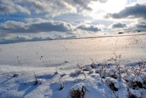 Fischbach tief verschneit_10