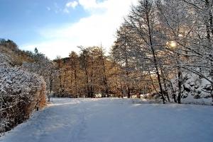 Fischbach tief verschneit_40