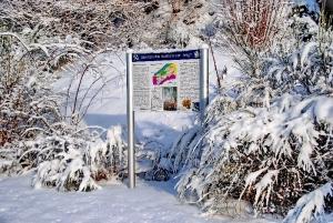 Fischbach tief verschneit_48