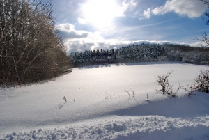 Fischbach tief verschneit_51