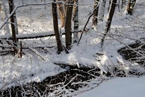 Fischbach tief verschneit_52