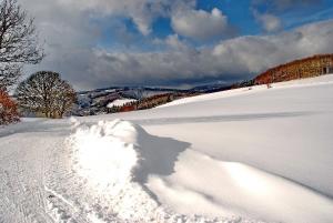 Fischbach tief verschneit_59