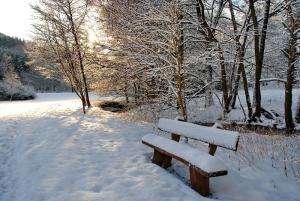 Fischbach tief verschneit_6