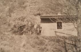 Angler Club 1967 e.V.